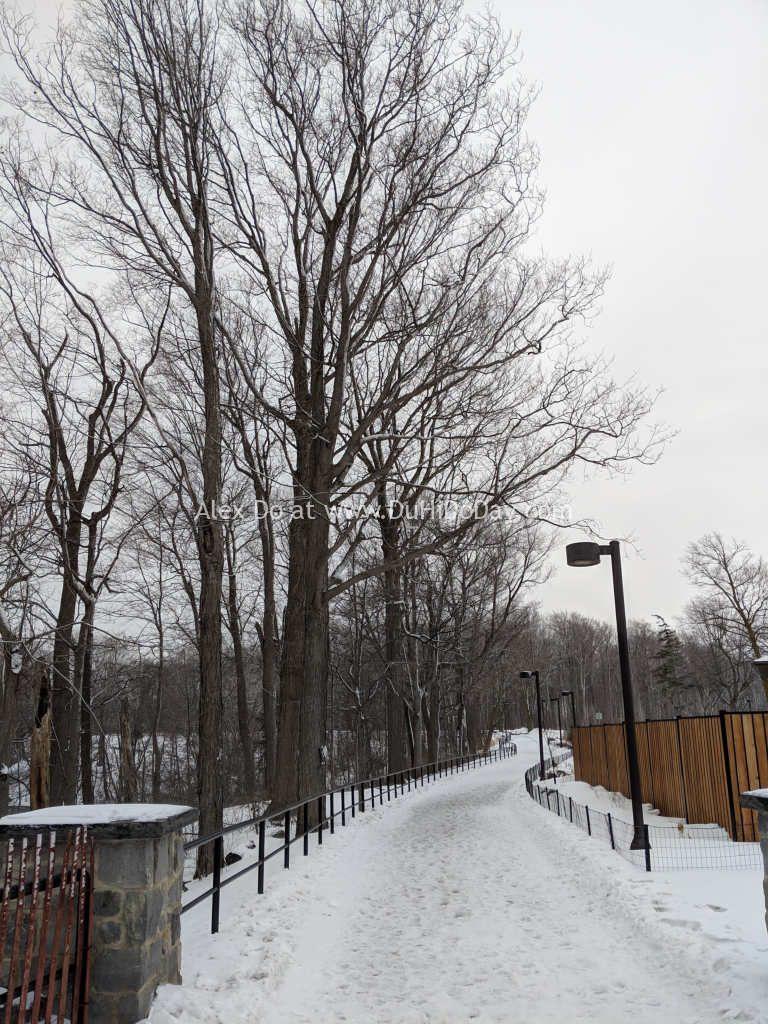 Con đường vào công viên Niagara phía bờ Mỹ