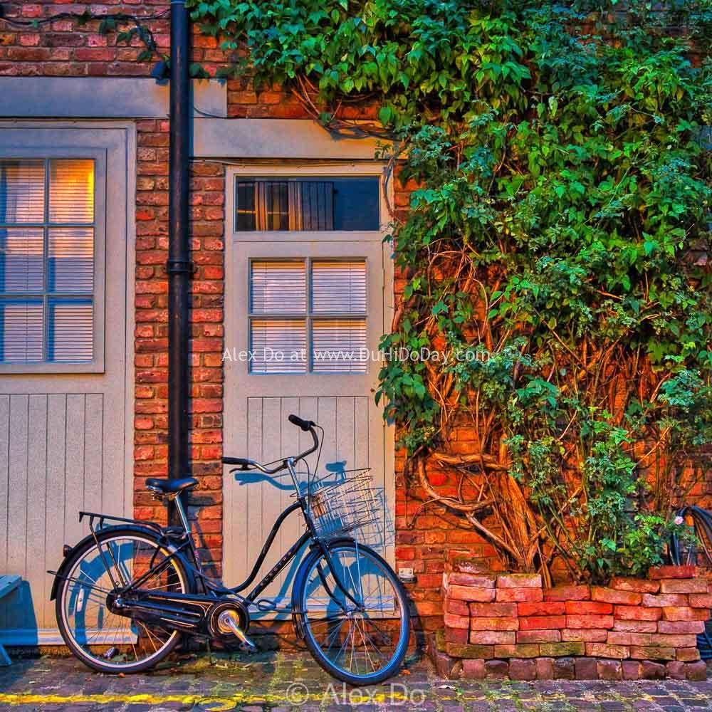 Xe đạp trước nhà ở St Lukes Mews