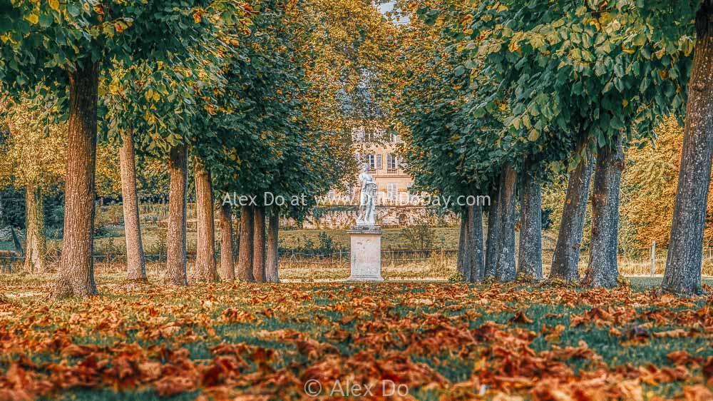 Lá thu trong vườn Chantilly
