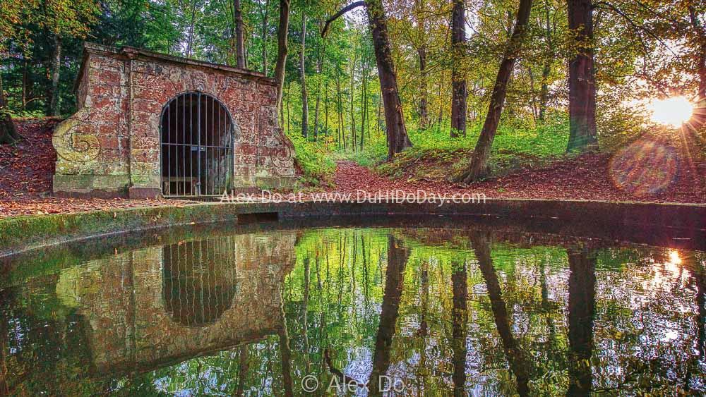 Một hồ nhỏ trong rừng Chantilly
